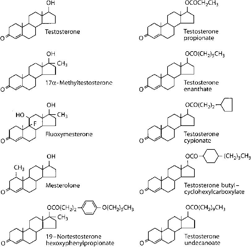 testosterone esters